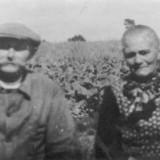 Julien Debaere en Barbara Van Poucke